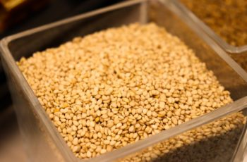 sesame seeds in a container